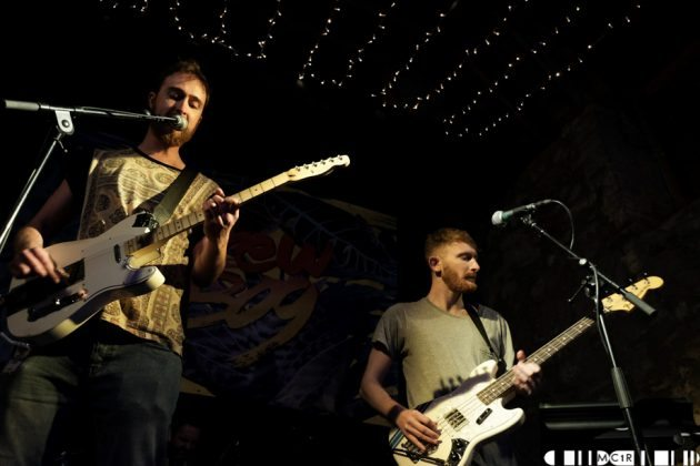 Foreign Fox at Brew at the Bog 2016