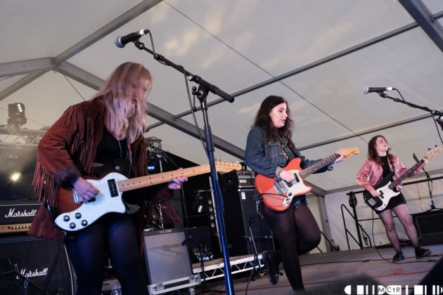 The Van T's at Brew at the Bog 2016