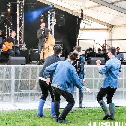 Viper Swing 5 at Northen Roots 2017  420x420 - Northern Roots, 23/6/2017 - Images UPDATED