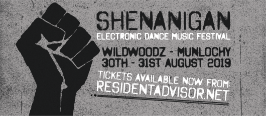 shenanigan 2019 1 530x232 - New Dance Festival for Dores