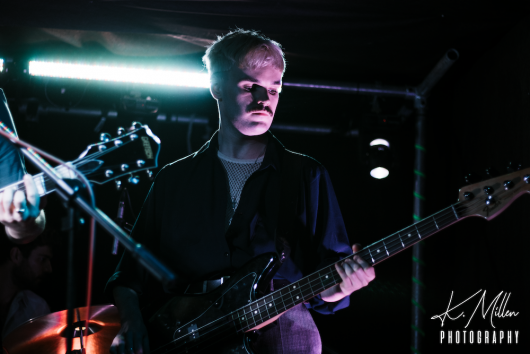 Alligator at Tooth Claw Inverness 0216 530x354 - Tenement TV Tour, 27/4/2019 - Images