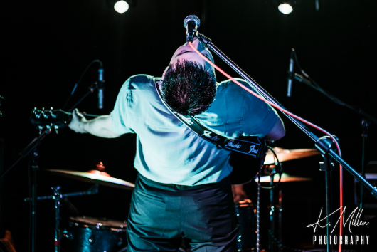 Alligator at Tooth Claw Inverness 0234 530x354 - Tenement TV Tour, 27/4/2019 - Images