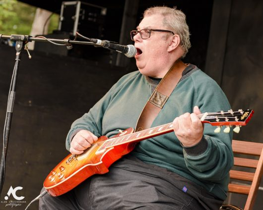 Big Bobs Blues Band at Woodzstock 2019 12 530x424 - Woodzstock 2019 - IMAGES