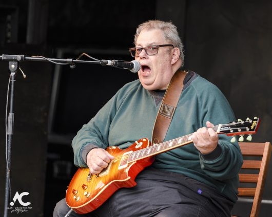 Big Bobs Blues Band at Woodzstock 2019 35 530x424 - Woodzstock 2019 - IMAGES