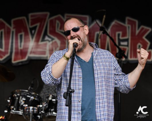 Big Bobs Blues Band at Woodzstock 2019 38 530x424 - Woodzstock 2019 - IMAGES