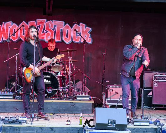 Iain McLaughlin The Outsiders at Woodzstock 2019 78 530x424 - Woodzstock 2019 - IMAGES