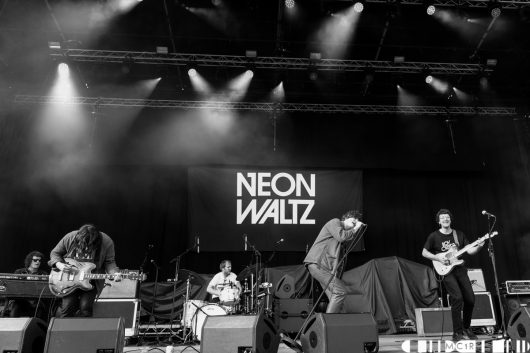 Neon Waltz Bught Park Inverness June 2019 5 530x353 - Noel Gallagher's High Flying Birds, 8/6/2019- Images