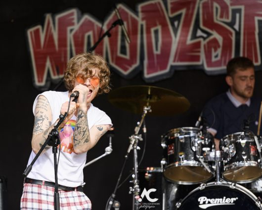 The Malts at Woodzstock 2019 18 530x424 - Woodzstock 2019 - IMAGES