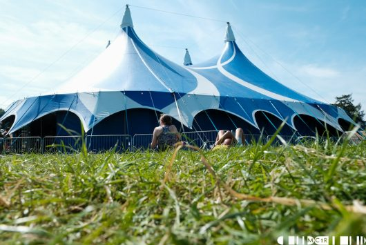 Arounds the grounds of Belladrum 2019 55 530x355 - Around the ground of Belladrum 2019
