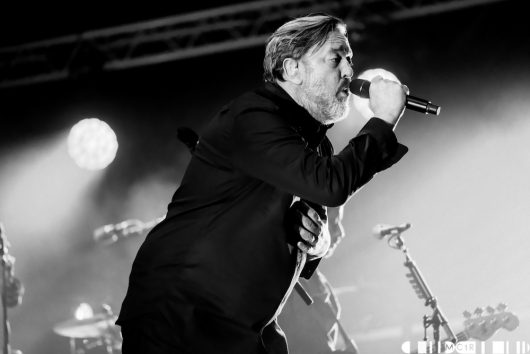 Elbow 21 530x354 - Elbow, Belladrum 2019 - Images