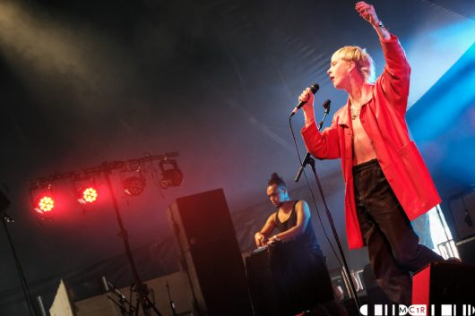 The Ninth Wave at Belladrum 2019 3 530x353 - The NINTH WAVE, Belladrum 2019 - Images