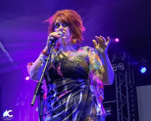 The Rezillos Belladrum 20 19 35 530x424 - The Rezillos, Belladrum 2019 - Images
