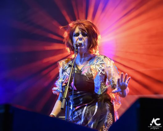 The Rezillos Belladrum 20 19 37 530x424 - The Rezillos, Belladrum 2019 - Images
