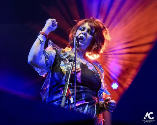 The Rezillos Belladrum 20 19 39 530x424 - The Rezillos, Belladrum 2019 - Images