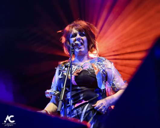 The Rezillos Belladrum 20 19 41 530x424 - The Rezillos, Belladrum 2019 - Images