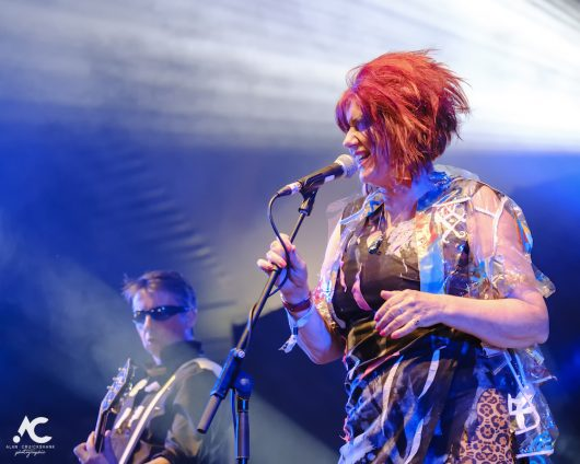 The Rezillos Belladrum 20 19 42 530x424 - The Rezillos, Belladrum 2019 - Images