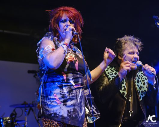 The Rezillos Belladrum 20 19 44 530x424 - The Rezillos, Belladrum 2019 - Images