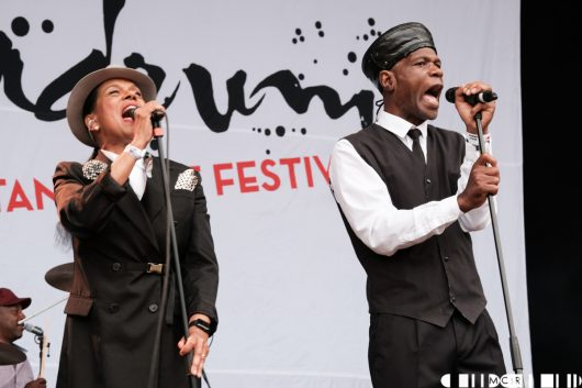The Selecter at Belladrum 2019 9 530x353 - The Selecter, Belladrum 2019 - Images