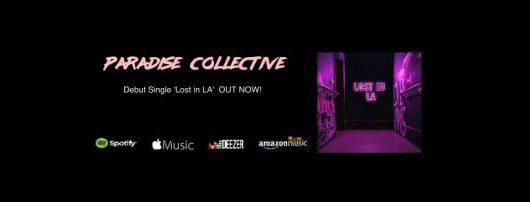 94582107 131979155075462 8069412159479611392 n 530x202 - Paradise Collective Announce Debut Single
