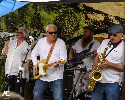Dougie Burns and the Cadilacs Medicine Music July 2020 24 530x424 - Virtual Hootananny Potting Shed Stage 31/7/2020 - Images
