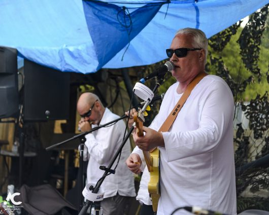 Dougie Burns and the Cadilacs Medicine Music July 2020 28 530x424 - Virtual Hootananny Potting Shed Stage 31/7/2020 - Images