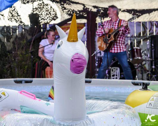 Jim Kennedy Medicine Music July 2020 35 530x424 - Virtual Hootananny Potting Shed Stage 31/7/2020 - Images