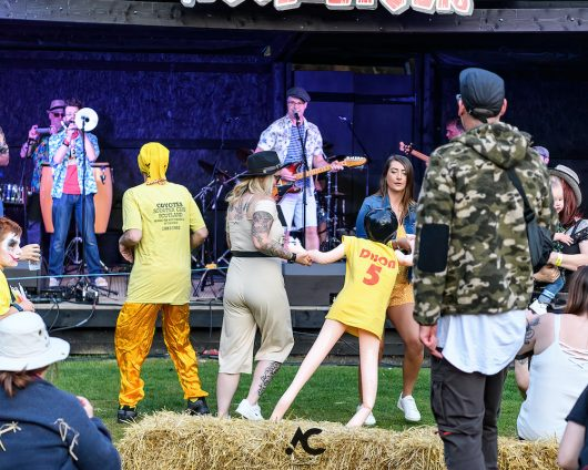 Folk at the Fest Woodzstock 2021 10 530x424 - Folk at the Fest Woodzstock2021 - IMAGES
