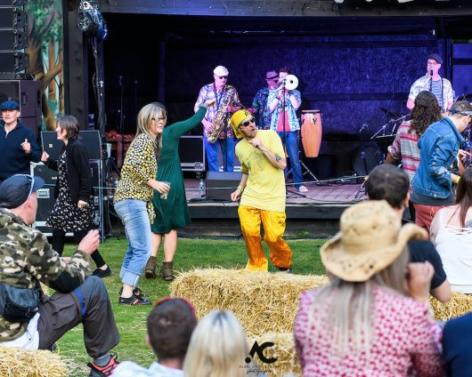 Folk at the Fest Woodzstock 2021 12 530x424 - Folk at the Fest Woodzstock2021 - IMAGES