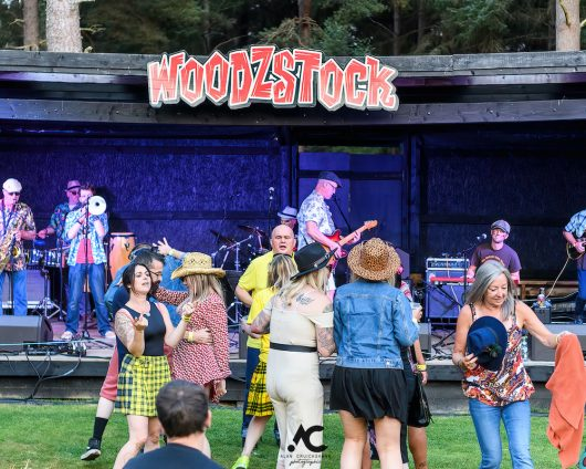Folk at the Fest Woodzstock 2021 13 530x424 - Folk at the Fest Woodzstock2021 - IMAGES