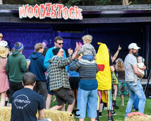 Folk at the Fest Woodzstock 2021 14 530x424 - Folk at the Fest Woodzstock2021 - IMAGES