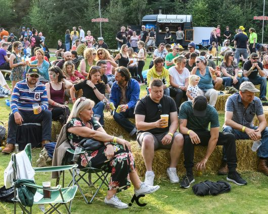 Folk at the Fest Woodzstock 2021 5 530x424 - Folk at the Fest Woodzstock2021 - IMAGES