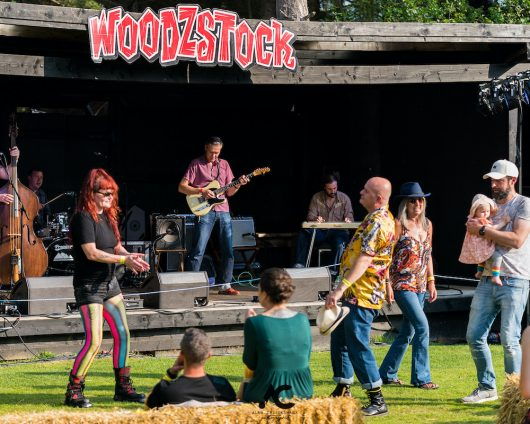 Folk at the Fest Woodzstock 2021 82 530x424 - Folk at the Fest Woodzstock2021 - IMAGES