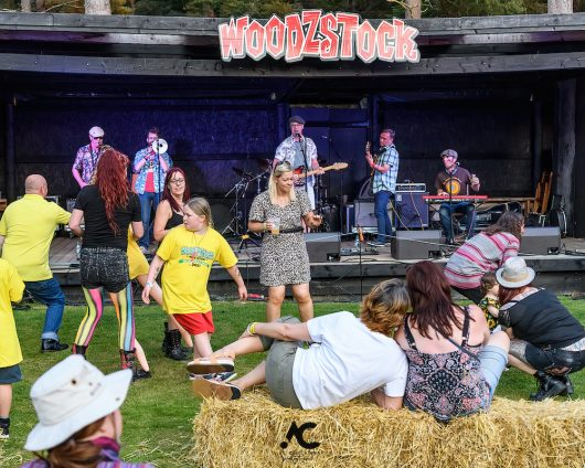 Folk at the Fest Woodzstock 2021 9 530x424 - Folk at the Fest Woodzstock2021 - IMAGES